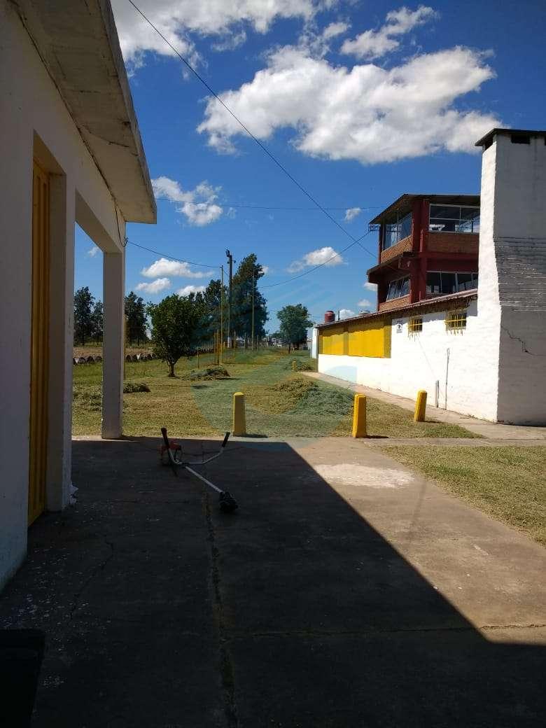 """Franconi: """"Los Tobaganes es otro logro del gobierno de la ciudad que sigue creciendo"""""""